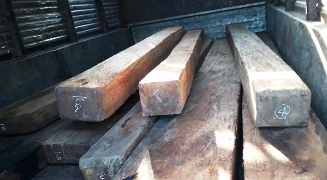 Khởi tố 2 đối tượng chở gỗ lậu tông xe, hành hung lực lượng kiểm lâm - 1
