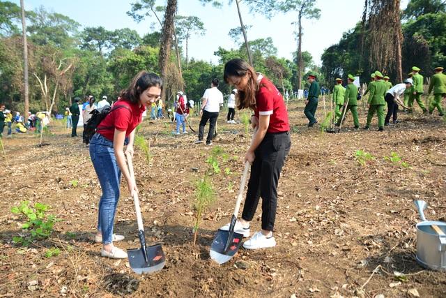 """Hàng nghìn người trồng 2.000 cây Thông Mã Vĩ trên đồi cây """"Dâng Bác - Ơn Thầy"""" - 6"""