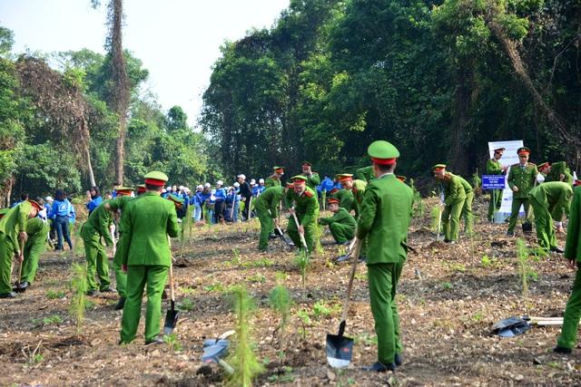 """Hàng nghìn người trồng 2.000 cây Thông Mã Vĩ trên đồi cây """"Dâng Bác - Ơn Thầy"""" - 1"""