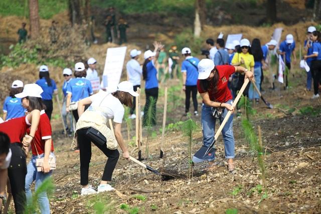 """Hàng nghìn người trồng 2.000 cây Thông Mã Vĩ trên đồi cây """"Dâng Bác - Ơn Thầy"""" - 3"""