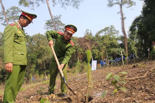 """Hàng nghìn người trồng 2.000 cây Thông Mã Vĩ trên đồi cây """"Dâng Bác - Ơn Thầy"""" - 2"""