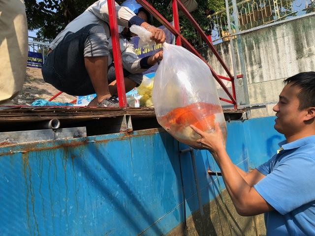 Tháo dỡ hệ thống làm sạch sông Tô Lịch, di chuyển đàn cá Koi sang Hồ Tây - 3