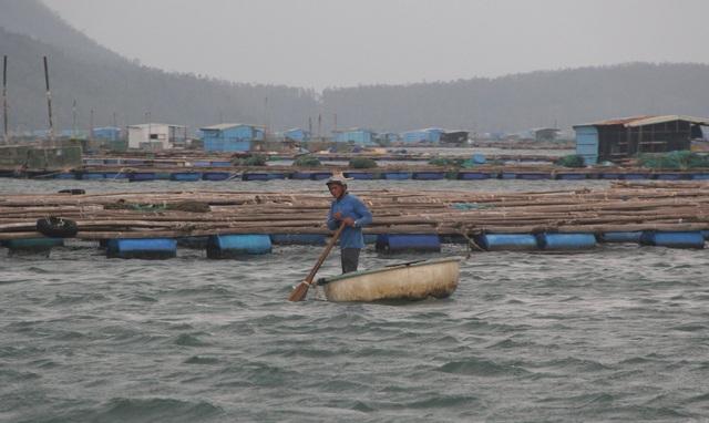 Quảng Ngãi đang mưa to gió mạnh, Phú Yên lo dân cố thủ giữ lồng bè - 7