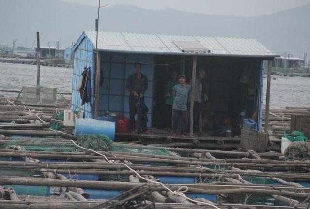 Quảng Ngãi đang mưa to gió mạnh, Phú Yên lo dân cố thủ giữ lồng bè - 4