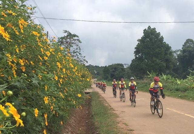 Du khách nườm nượp về miền Tây Quảng Trị thưởng thức vẻ đẹp hoa dã quỳ - 2
