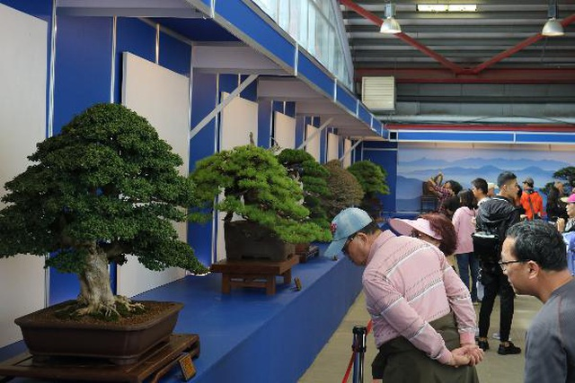 Lễ hội Bonsai  Suiseki Châu Á - Thái Bình Dương tại Suối Tiên - 3