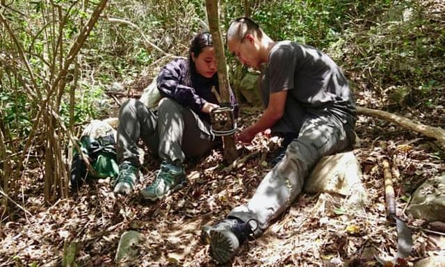 Hành trình tìm ra cheo cheo quý nghi đã tuyệt chủng 30 năm tại Việt Nam - 3