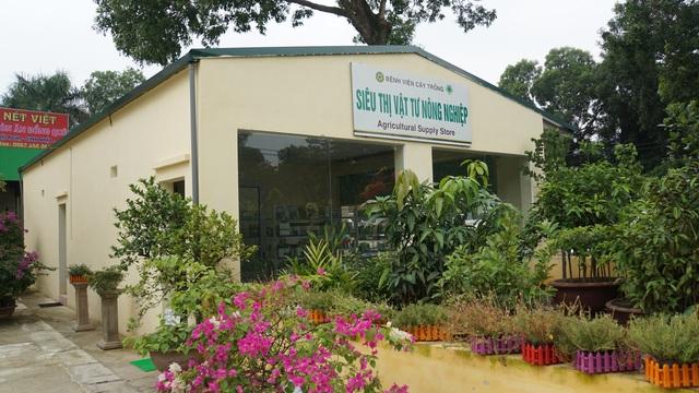 Khai trương bệnh viện chữa bệnh và chăm sóc sức khỏe cho cây trồng - 4