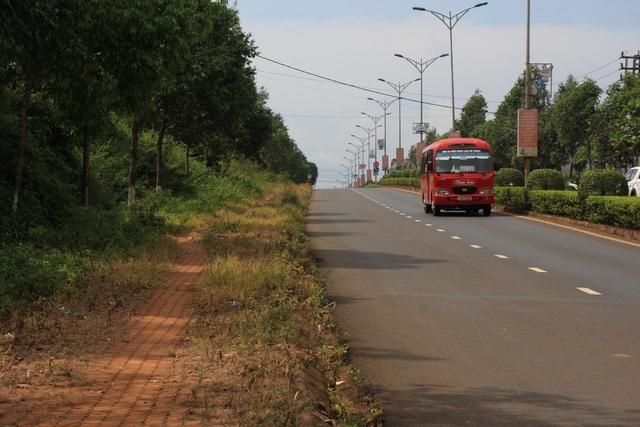 Dân kinh hãi trước cảnh dọn dẹp đường bằng... thuốc diệt cỏ - 5