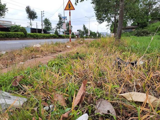 Dân kinh hãi trước cảnh dọn dẹp đường bằng... thuốc diệt cỏ - 4