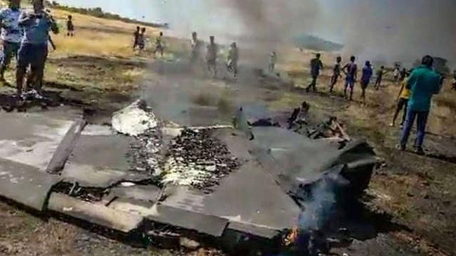 Video máy bay chiến đấu Ấn Độ bốc cháy trên không nghi do đâm phải chim - 3