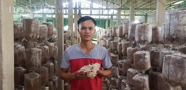 Chán lương công nhân, 9X về trồng nấm, kiếm 30 triệu/tháng - 1
