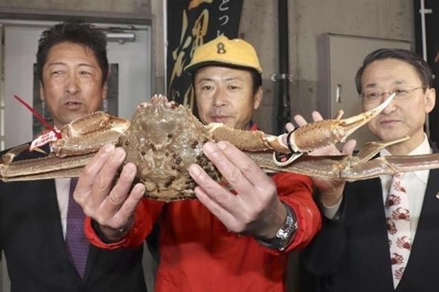 Ăn 1 con cua lạ giá 1 chỉ vàng, ngả mũ chơi sang của nhà giàu Việt - 2