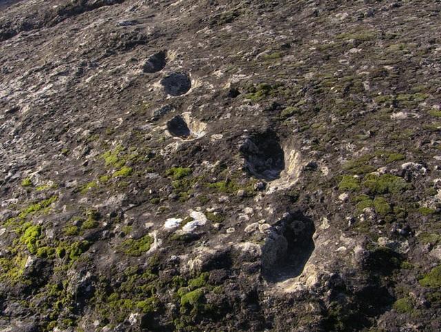 Dấu chân hóa thạch ở núi lửa Roccamonfina là của ai? - 1