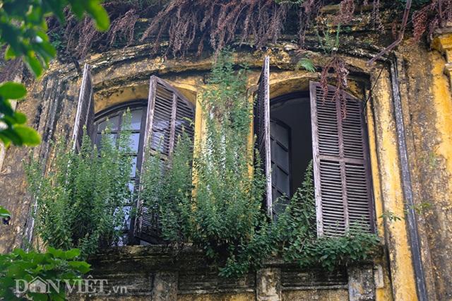 Hình ảnh biệt thự Pháp cổ trên đất vàng Hà Nội ngập trong rác - 3