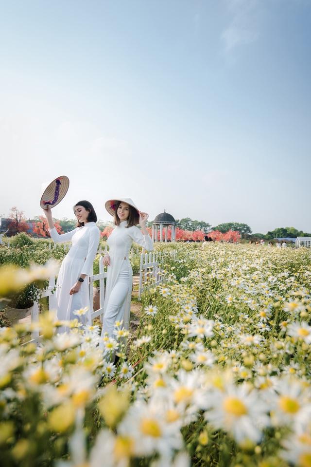Nữ du khách nước ngoài diện áo dài, chụp ảnh duyên dáng bên cúc họa mi - 7
