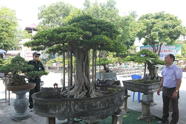 """Chiêm ngưỡng """"chùa Đồng"""" dưới bóng cây sanh tiền tỷ - 1"""