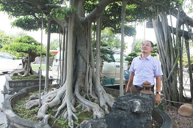 """Chiêm ngưỡng """"chùa Đồng"""" dưới bóng cây sanh tiền tỷ - 13"""