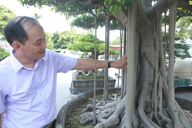"""Chiêm ngưỡng """"chùa Đồng"""" dưới bóng cây sanh tiền tỷ - 14"""