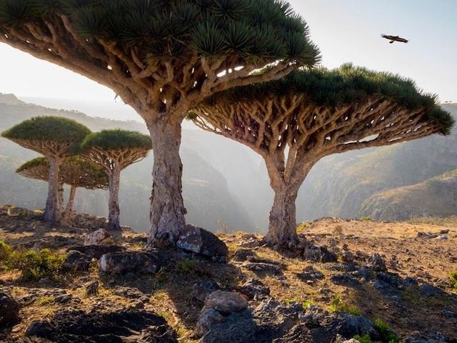 15 di sản Unesco đẹp nhất thế giới - 4