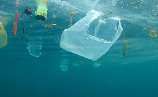 Doanh nghiệp Việt đặt mục tiêu mỗi năm giảm 300 tấn rác nhựa dùng một lần  - 2