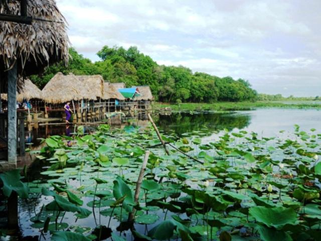 Đầu tư Khu du lịch sinh thái nghỉ dưỡng 100 tỷ đồng tại Trằm Trà Lộc - 1