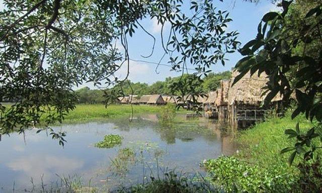 Đầu tư Khu du lịch sinh thái nghỉ dưỡng 100 tỷ đồng tại Trằm Trà Lộc - 4