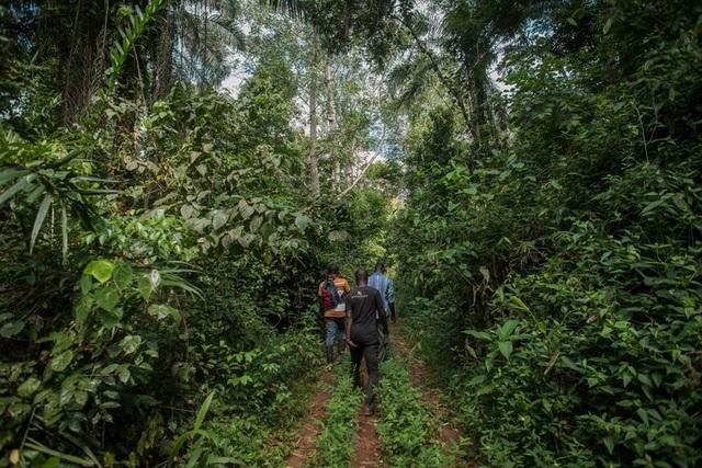 Thỏa thuận bô xít của Trung Quốc với Ghana: Bẫy nợ, ô nhiễm môi trường và các mối đe dọa tiềm ẩn - 3