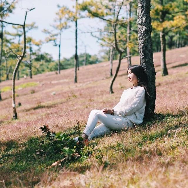 Tháng 11 về, lạc vào cánh đồng cỏ hồng đẹp như xứ sở thần tiên ở Đà Lạt - 7