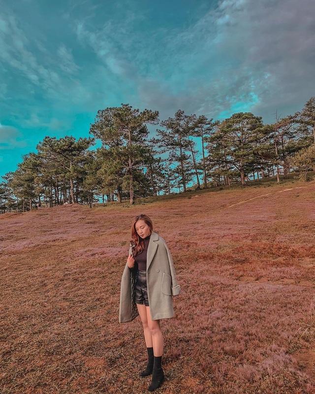 Tháng 11 về, lạc vào cánh đồng cỏ hồng đẹp như xứ sở thần tiên ở Đà Lạt - 4