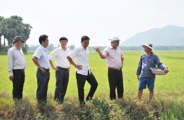 An Giang: Ngành lúa gạo và thủy sản An Giang đạt kết quả nổi bật nhờ ứng dụng công nghệ cao - 1