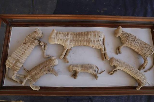 Lần đầu tiên phát hiện 2 xác ướp sư tử ở Ai Cập - 1
