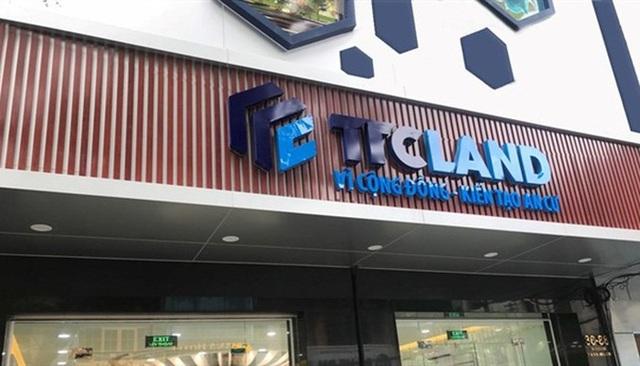 Đại gia địa ốc Sài Gòn Thương Tín khai khống gần 8 tỷ đồng tiền thuế  - 1