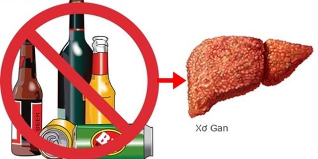 Phát triển thuốc điều trị xơ gan do rượu - 1