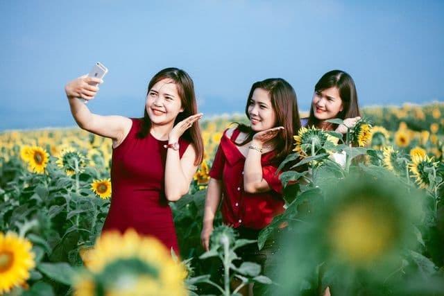 Lễ hội hoa hướng dương 2019 sẽ diễn ra trong 3 ngày - 3