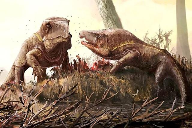 Loài rồng 250 triệu năm tuổi với cái đầu khổng lồ kì lạ ở Nga - 1