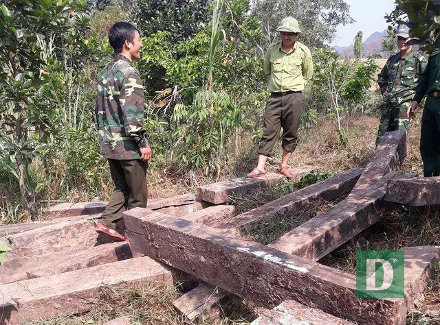 Nhiều nhân viên bảo vệ rừng bỏ việc vì nghề nguy hiểm, lương không đủ sống - 2