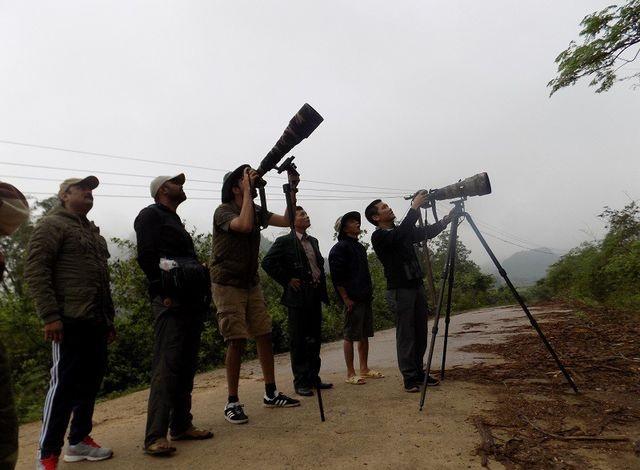Bảo vệ loài voọc đen gáy trắng quý hiếm trên 6 khối núi đá vôi ở Quảng Bình - 5