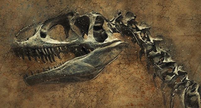 Phát hiện ra loài khủng long mới ở Trung Quốc - 1