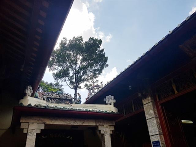 Thăm lăng Tổng trấn thành Gia Định xưa - 8