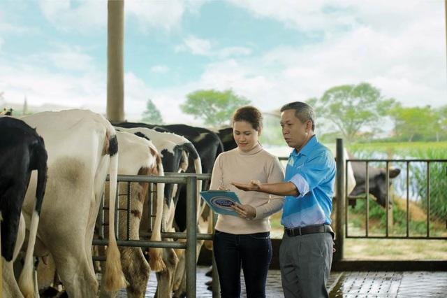 Cô Gái Hà Lan: Câu chuyện về 20 phút vàng và nguồn sữa tươi nguyên liệu an toàn hàng đầu Việt Nam - 4