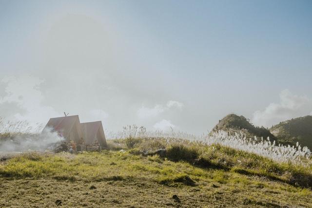 """Giới trẻ rủ nhau """"sống ảo"""" trên ngọn đồi lau mới nổi ngay gần Hà Nội - 8"""