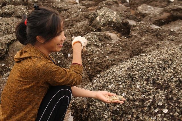Độc đáo nghề gõ hà biển ở Đồ Sơn - 6