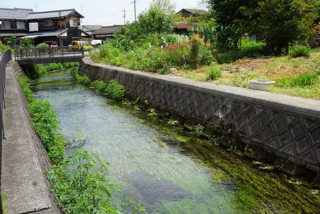Đến ngôi làng có nước sạch đến mức người dân rửa bát, nấu cơm ngay ở kênh mương nuôi cá - 1