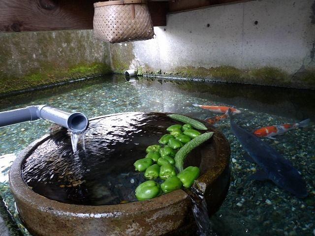 Đến ngôi làng có nước sạch đến mức người dân rửa bát, nấu cơm ngay ở kênh mương nuôi cá - 3