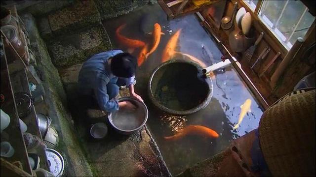 Đến ngôi làng có nước sạch đến mức người dân rửa bát, nấu cơm ngay ở kênh mương nuôi cá - 4