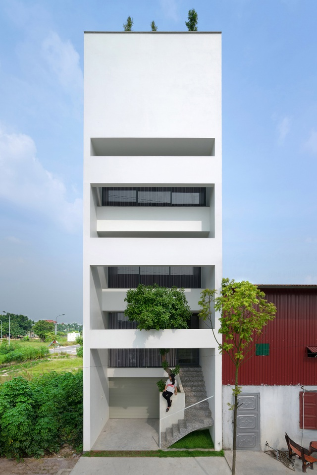 Trồng tre ngay giữa nhà, ngôi nhà Bắc Ninh gây ấn tượng mạnh bởi thiết kế độc đáo - 1