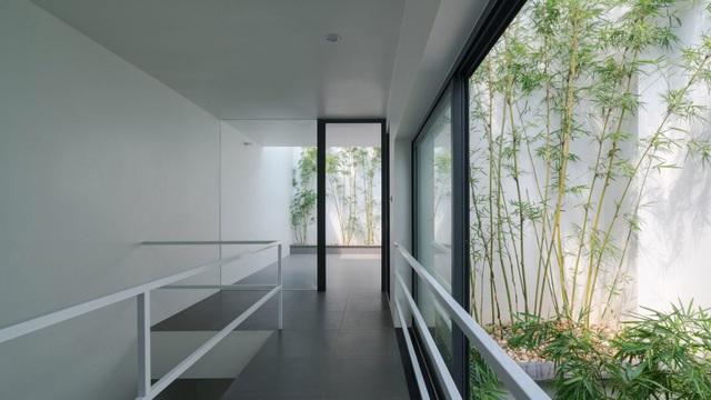 Trồng tre ngay giữa nhà, ngôi nhà Bắc Ninh gây ấn tượng mạnh bởi thiết kế độc đáo - 2