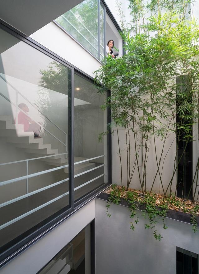 Trồng tre ngay giữa nhà, ngôi nhà Bắc Ninh gây ấn tượng mạnh bởi thiết kế độc đáo - 3