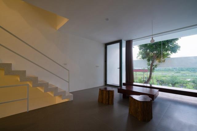 Trồng tre ngay giữa nhà, ngôi nhà Bắc Ninh gây ấn tượng mạnh bởi thiết kế độc đáo - 6